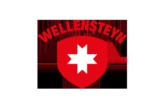 Wellensteyn Logo
